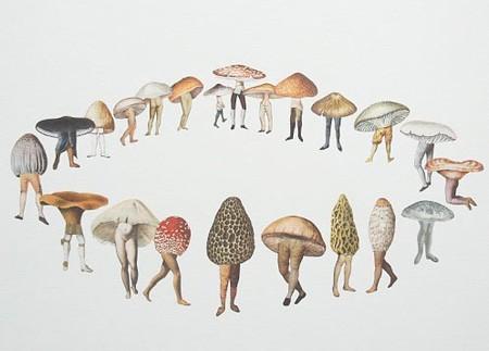 Mycelium and Mushroom Manufacturers - Mediamatic