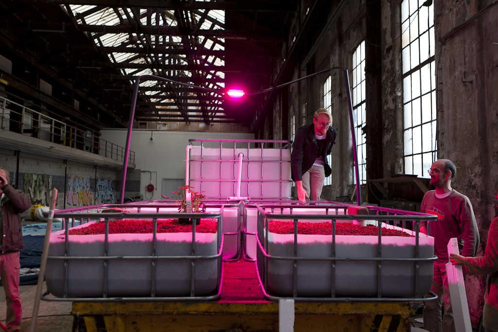 aquaponics mediamatic fabriek may2012 18 BFECCFE8B8BF A256C24F0CBD75