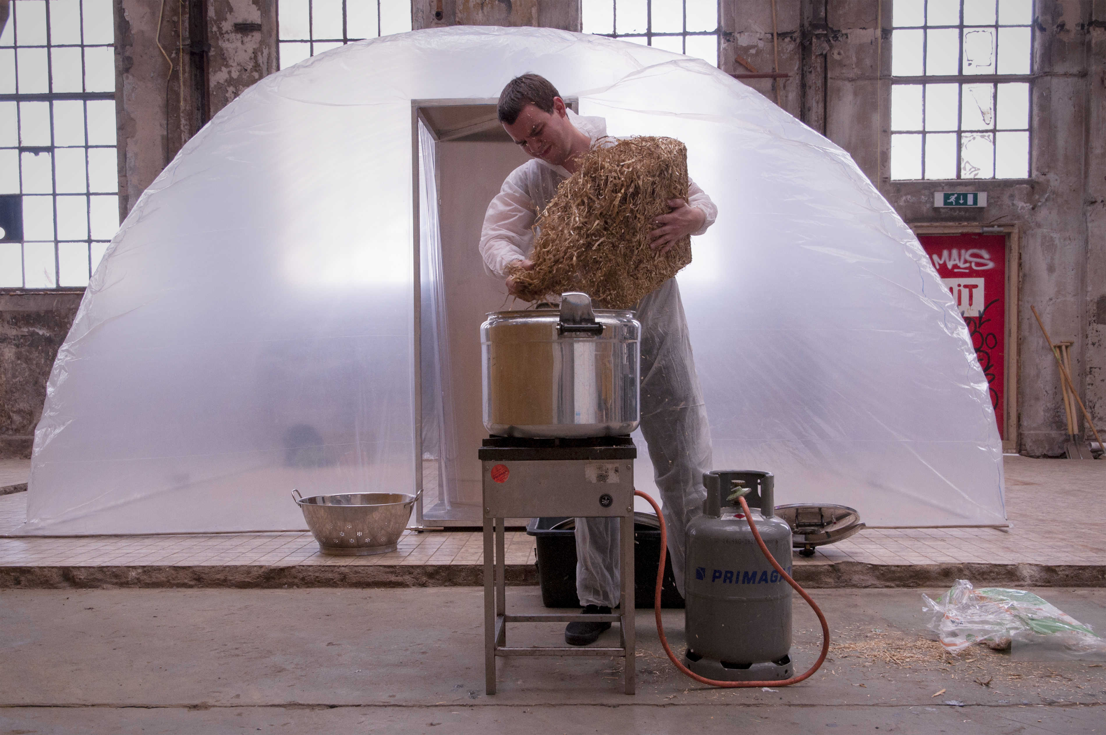 Workshop: grow your own Magic Mushrooms - Mediamatic