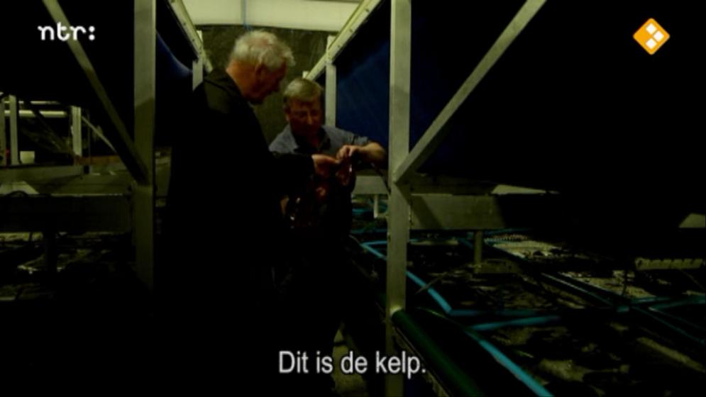 De Wilde Keuken : Still from episode fruit the mer from de wilde keuken mediamatic