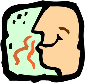 what do female pheromones smell like