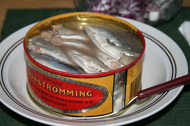 Картинки по запросу Surströmming