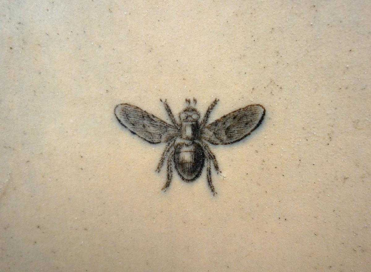 Honey Bee dating site Philips Sound Bar aansluiting