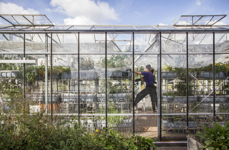 Aquaponic Greenhouse Architecture